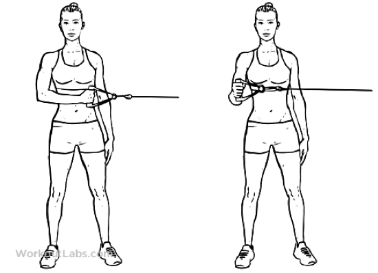 How to Strengthen your Rotator Cuff